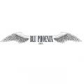Blu Phoenix Scarve